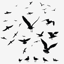 Sellos      de la categoría Aves  '