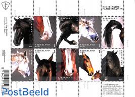 Horses 10v m/s