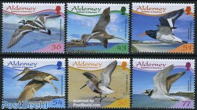 Resident birds 6v