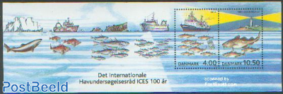 100 year ICES s/s