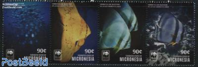 Orbicular Batfish 4v [:::] or [+] (90c)