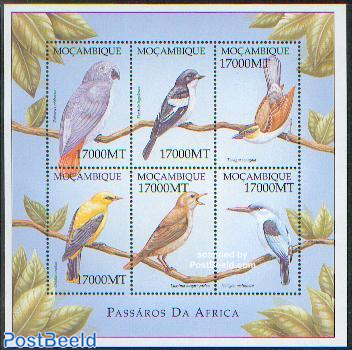 Birds 6v m/s /Psittaccus erithacus