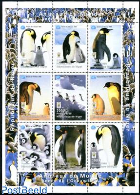 Animals 9v m/s, penguins
