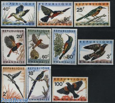 Birds 10v