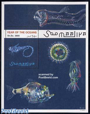 Int. ocean year s/s