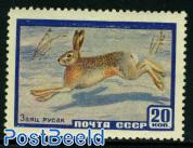 Animals rabbit 1v